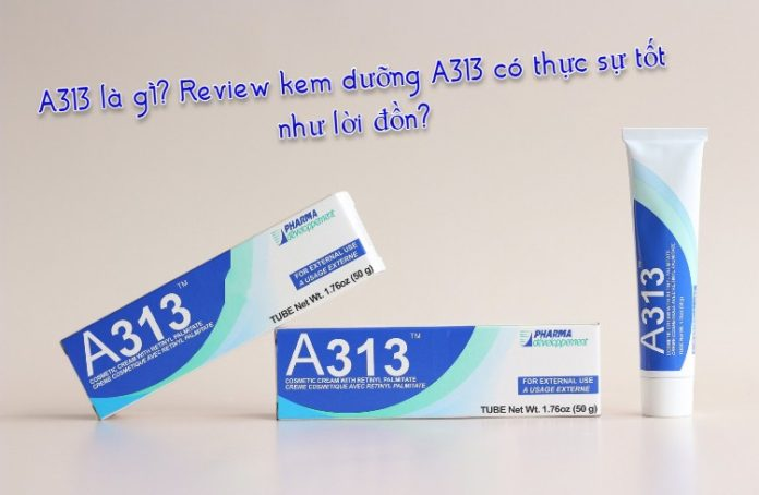 review a313